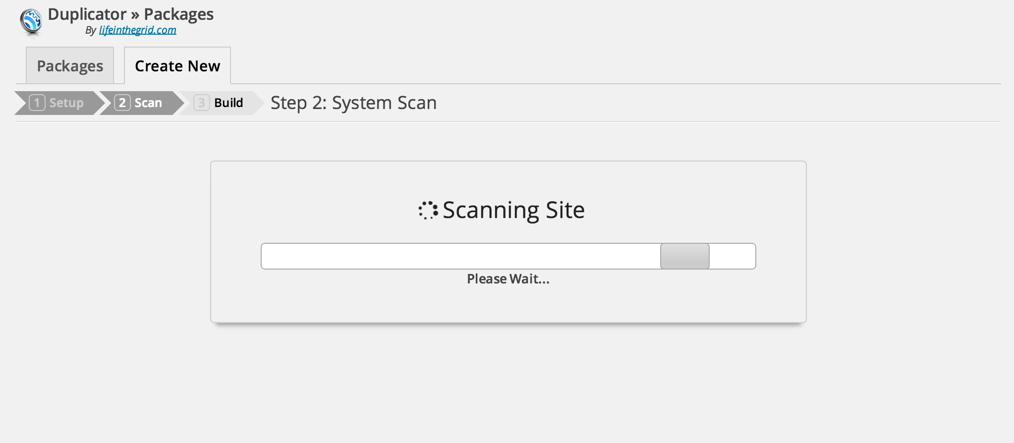 Wait for Duplicator to do a System Scan