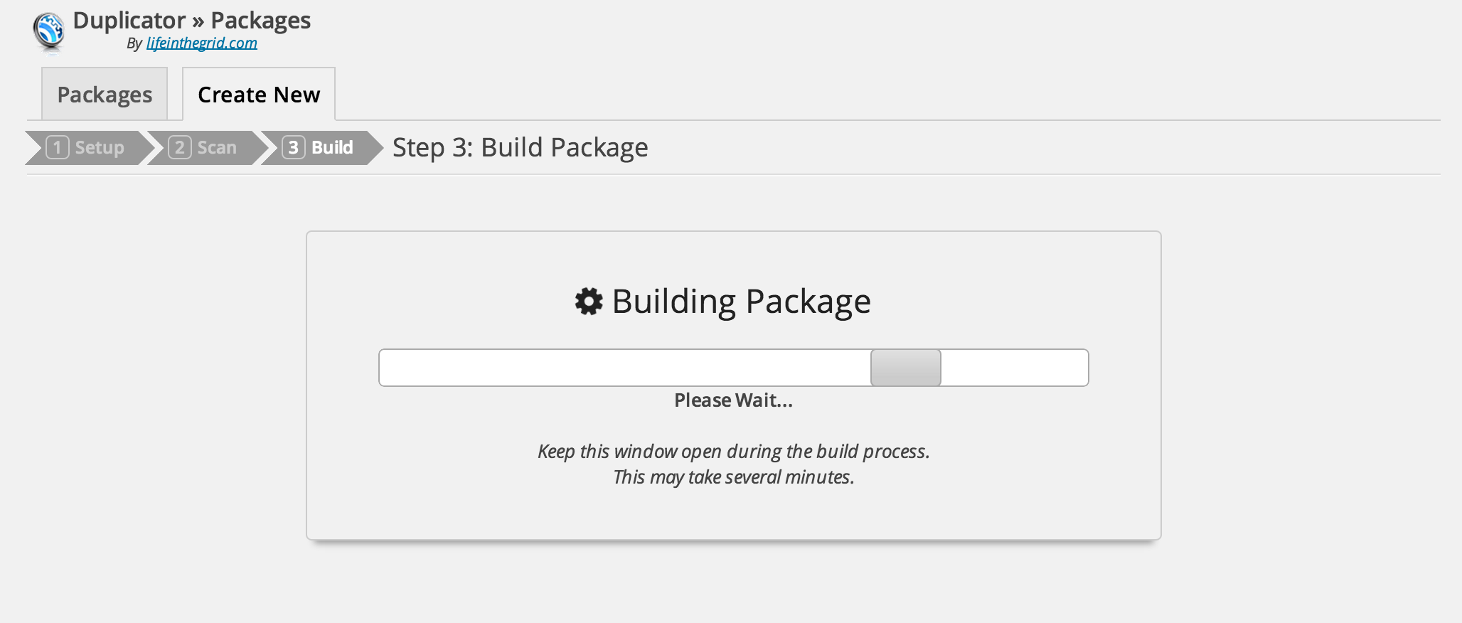 Wait for Duplicator to build the Package