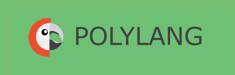 Polylang Integration
