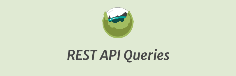 SearchWP API Queries
