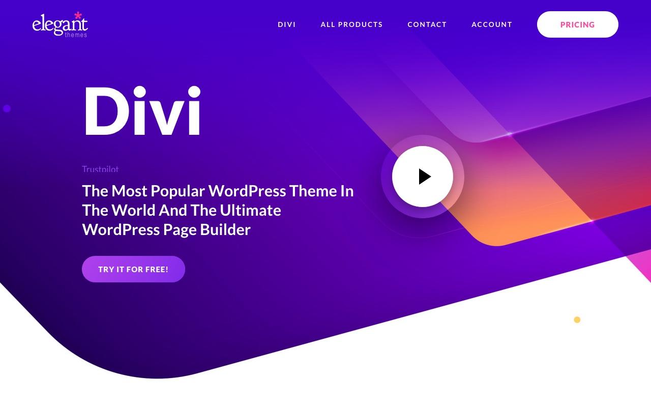 Screenshot of Divi website